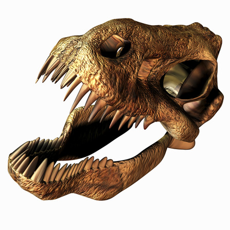T Rex Skull Sales Tax